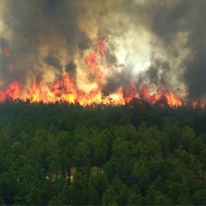 Wildfires in Texas are Close to Home (Literally)