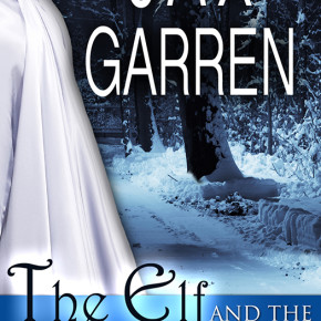 The Elf and the Ice Princess from Valkyrie Books