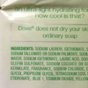 Introduction to Label Reading on Cosmetics and Food